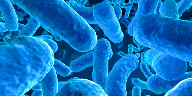 Manipulating the Human Microbiome to Manage Disease