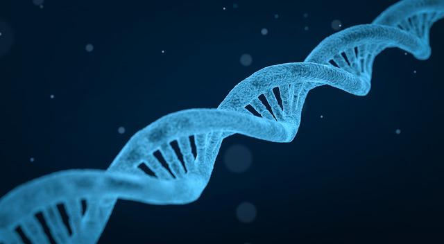 Sobrevivir en el intestino humano, las bacterias necesitan 'código de acceso' genético