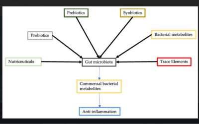 Modulation of Gut Microbiota for the Prevention and Treatment of COVID-19